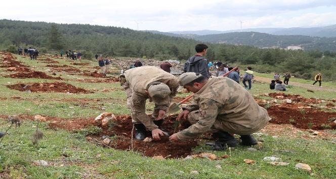 Hataylı Çanakkale şehitlerinin adı Amanoslar'da yaşatılacak