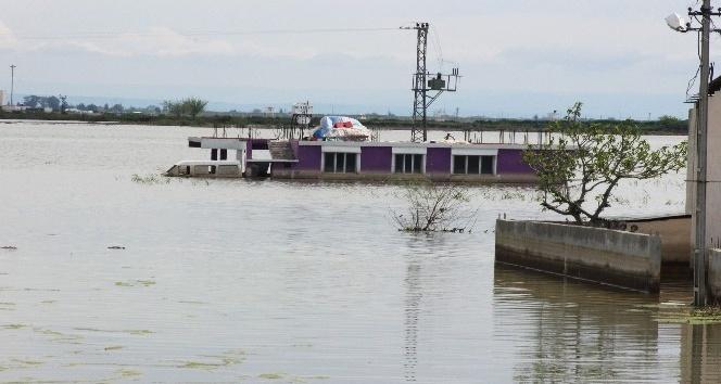 Amik Ovası'nda su seviyesi yükseldi