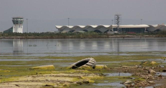 Amik Ovası'ndaki sular çekiliyor