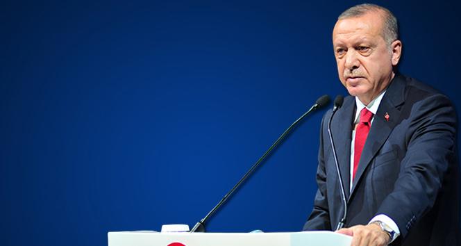 Cumhurbaşkanı Erdoğan'dan Reyhanlı açıklaması: Aracın içinde bomba olduğu belli