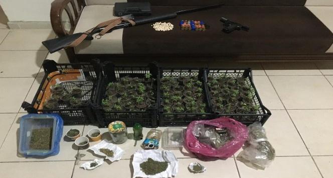 Hatay'da uyuşturucu operasyonu 1 gözaltı