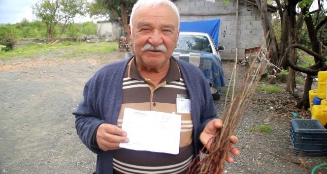 Fidan Sipariş veren Çiftçiye Kurumuş Fidan Gönderdiler