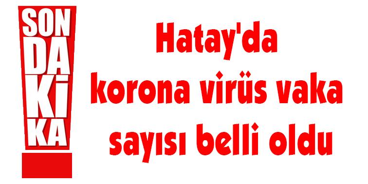 Hatay'da korona virüs vaka sayısı belli oldu