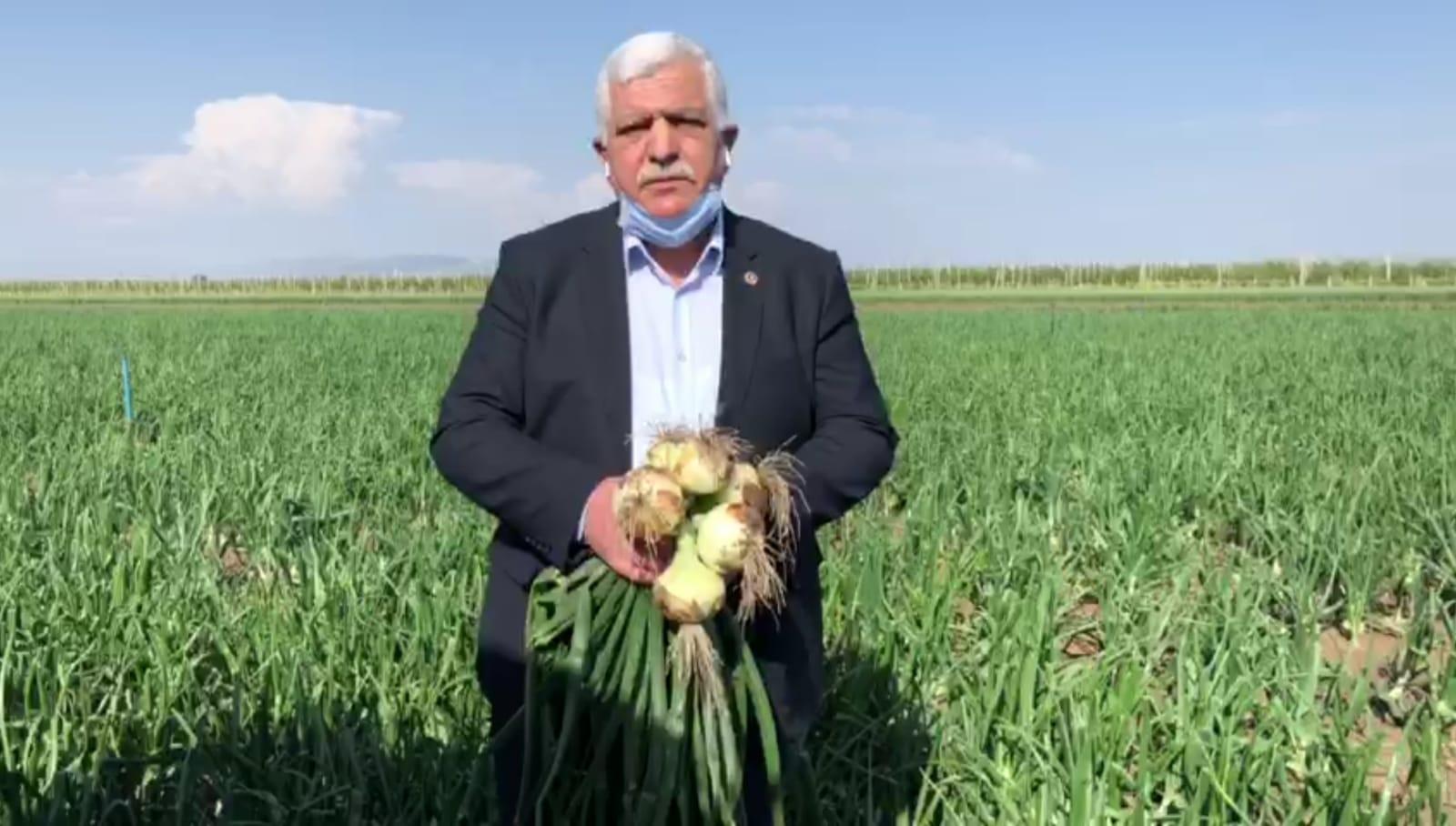 """Tokdemir """"25 bin dönüm ekili soğan tarlada kalmasın"""""""