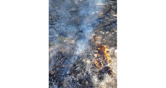 Hassa'da orman yangını, iki dekar alan zarar gördü