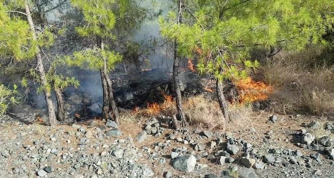 Erzin'de çıkan orman yangınında 2 hektarlık alan zarar gördü
