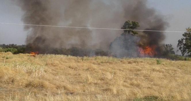 Kırıkhan'da çiftlik yangını