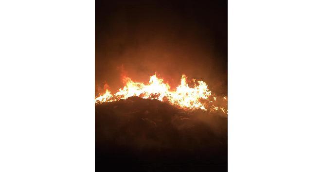 Payas'da çöplük alanda çıkan yangın söndürüldü