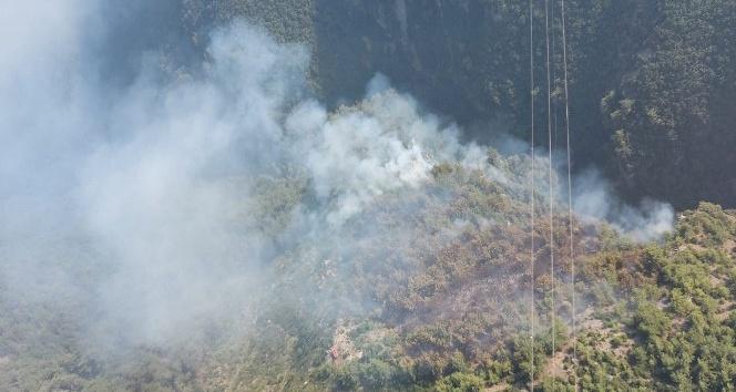 Hatay'daki orman yangınında 2 hektarlık alan zarar gördü
