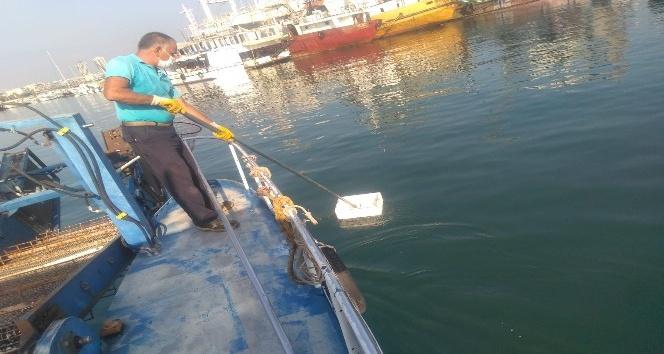 Hatay'daki sahil ve kumsallardan 5 ayda 462 ton atık toplandı
