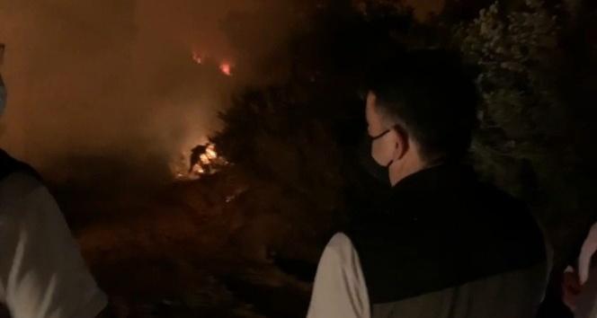 Bakan Pakdemirli, yanan alanları inceledi