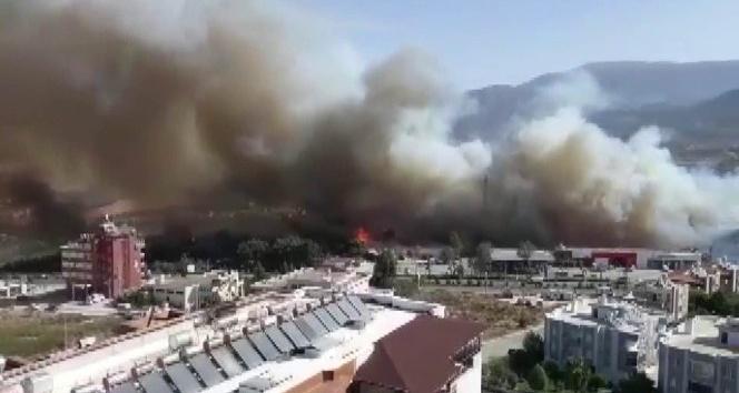 Orman yangını kente sıçradı