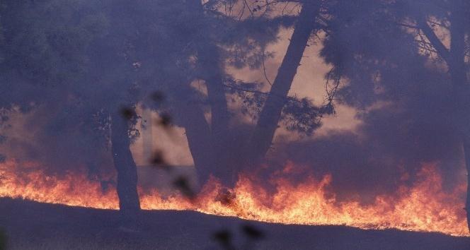Hatay'daki yangın farklı noktalara sıçradı