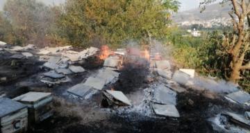 Samandağ'daki yangın sigara izmaritten çıkmış