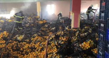 Yangında 10 ton mandalina zarar gördü