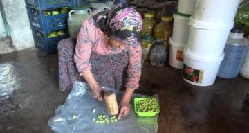 Okuyan çocuğu ve engelli eşi için zeytincilik işine girdi