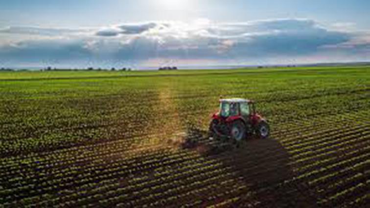 Çiftçilere destek ödemesi başladı