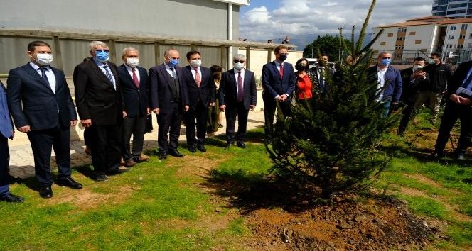 AB Türkiye Delegasyonu fidan dikti