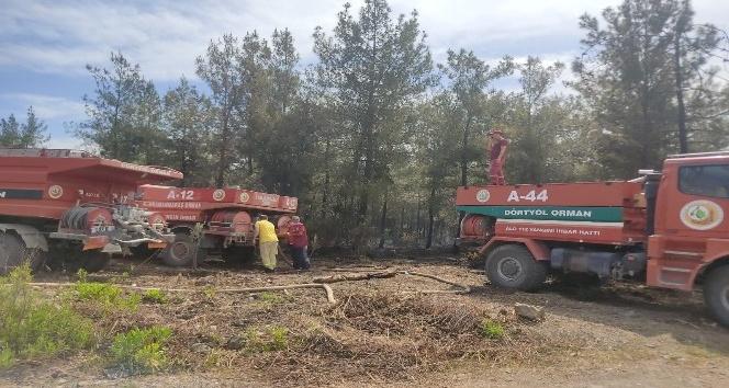Orman yangınında 1 hektarlık alan zarar gördü