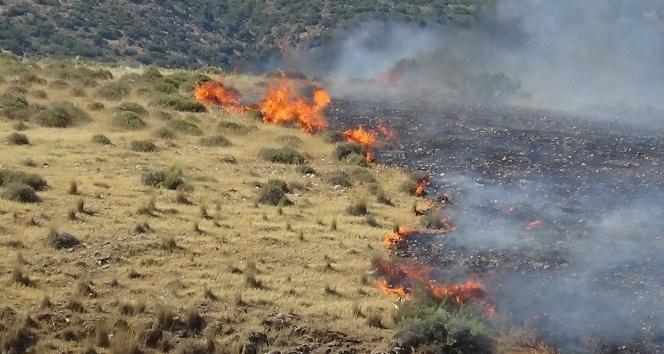 Kırıkhan'da makilik yangını