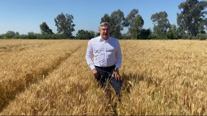Yayman, çiftçiye bereketli hasat diledi