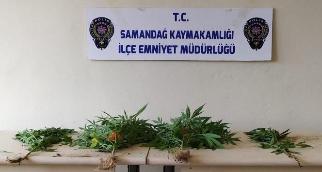 Samandağ'da uyuşturucu operasyonu: 2 gözaltı