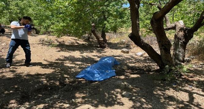 Kırıkhan'da bahçesine kayısı toplamaya giden yaşlı adam ölü bulundu