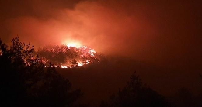 Hassa'da Orman Yangını