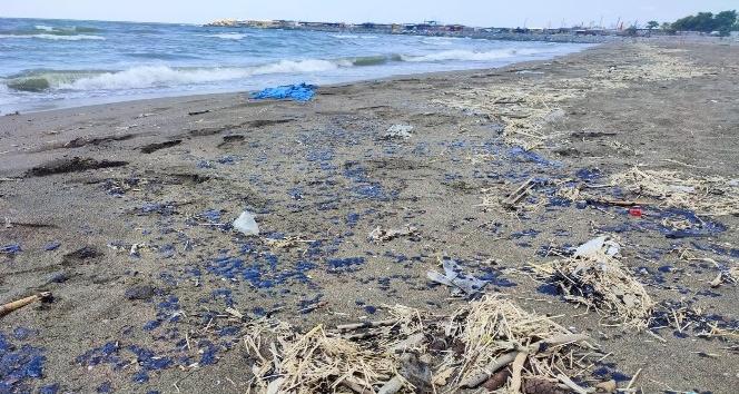 Samandağ Sahiline petrol sızıntısı vurdu