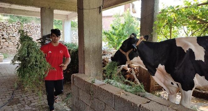 Çiftçilikten Avrupa Şampiyonluğu'na