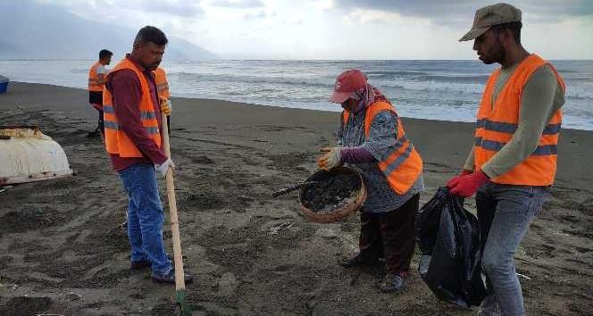 Samandağ'da petrol temizlik çalışmaları devam ediyor
