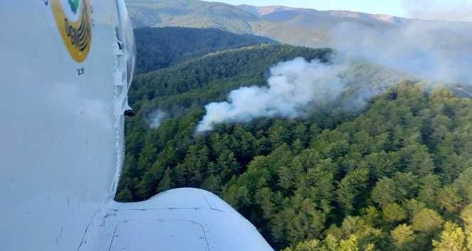 Samandag'da orman yangını kontrol altına alındı