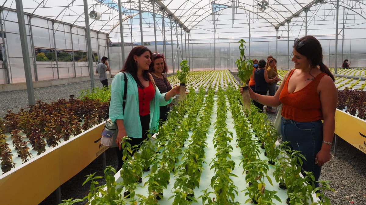 Kadın üreticiler tarım tekniklerini öğreniyor